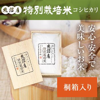 30年産   謹製 桐箱入 魚沼産コシヒカリ特別栽培米3kg
