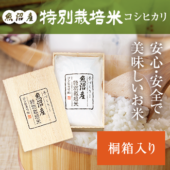 令和元年産  謹製 桐箱入 魚沼産コシヒカリ特別栽培米3kg