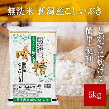 新米 令和2年産  無洗米 吟精 新潟産こしいぶき5kg