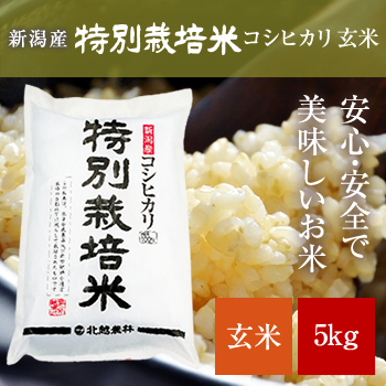 新米 30年産  新潟産コシヒカリ 特別栽培米 玄米5kg