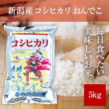 【新米】 令和元年産  新潟産コシヒカリ5kg