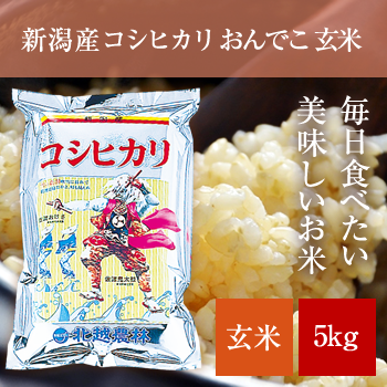 新米 30年産  新潟産コシヒカリ玄米5kg