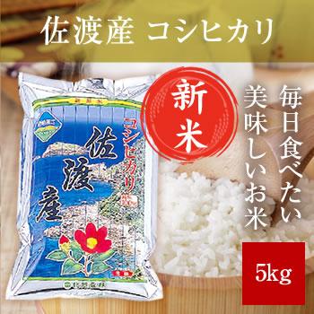 【新米予約】 令和元年産 佐渡産コシヒカリ 5kg