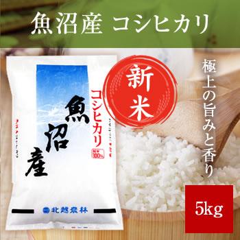 【新米予約】 令和元年産 魚沼産コシヒカリ 5kg