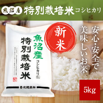 【新米予約】 魚沼産コシヒカリ 特別栽培米 5kg  【令和3年産 10月中旬頃発送】
