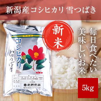 【新米予約】 新潟産コシヒカリ 雪つばき 5kg 【令和3年産 9月下旬頃発送】