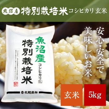 魚沼産コシヒカリ 特別栽培米 玄米5kg