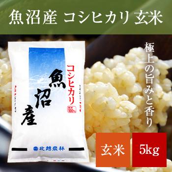 新米 30年産  魚沼産コシヒカリ玄米5kg