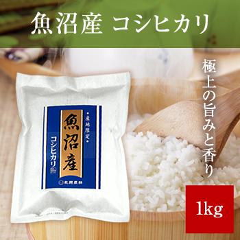 【新米】 令和元年産  魚沼産コシヒカリ1kg