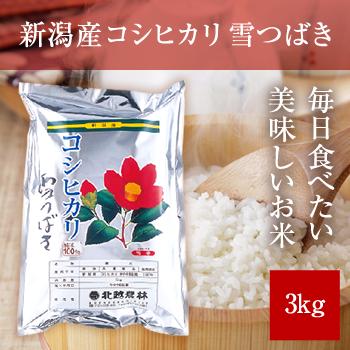 【新米】 令和元年産  新潟産コシヒカリ 雪つばき3kg