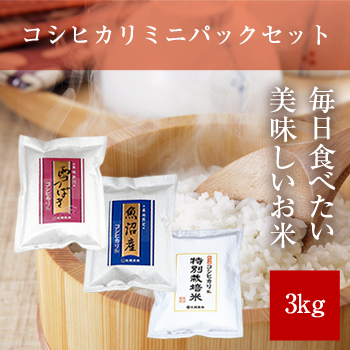 【新米】 令和元年産  コシヒカリミニパックセット3kg