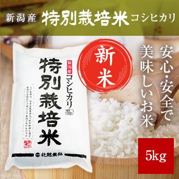 【新米予約】 令和元年産 新潟産コシヒカリ 特別栽培米 5kg