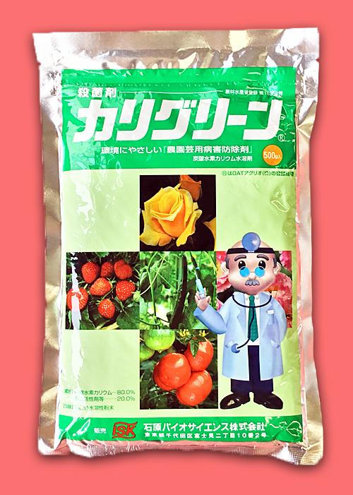【殺菌剤】カリグリーン(500g)  【10,000円以上購入で送料0円 安心価格】 (RACコード F:NC)