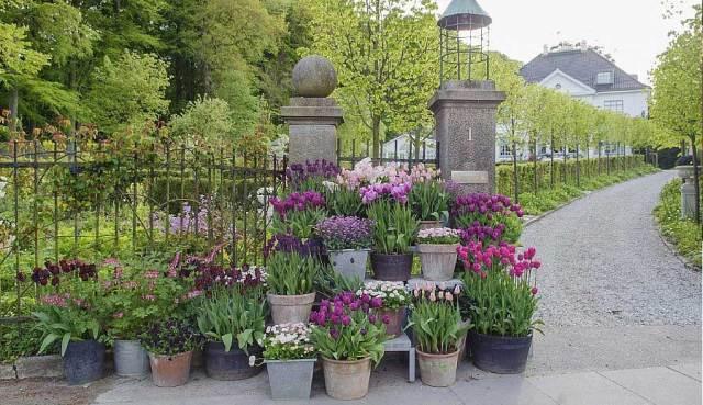 Poting Garden