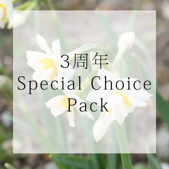 【パック】3周年Special Choice Pack