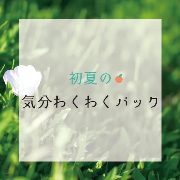 【パック】合計7M!初夏の気分わくわくパック(アイロンシート付)