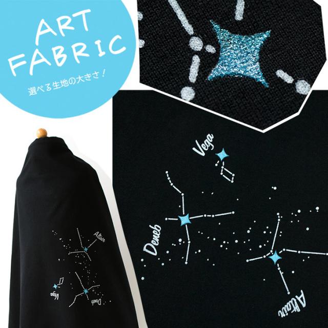 【アートファブリック】夜空を彩る星たち(ベース:クラシック天竺)