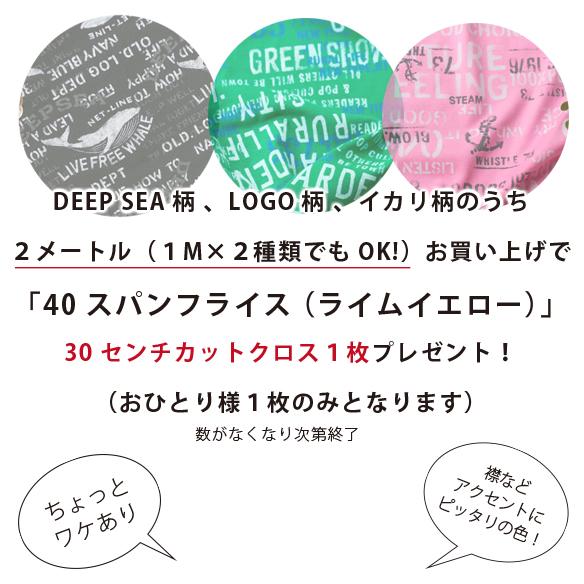 【プレゼント】夏のTシャツづくり応援!対象商品お買い上げでスパンフライスプレゼント!