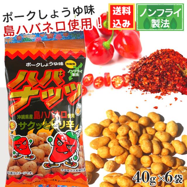 【送料込み】ハバナッツ(ポーク しょうゆ味)40g×6袋 メール便発送の為 日時指定・代金引換不可