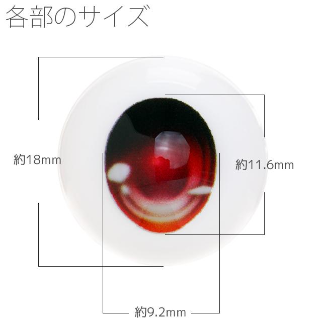 【EYOB-F18】尾櫃瞳(オビツアイ) Fタイプ 18mm