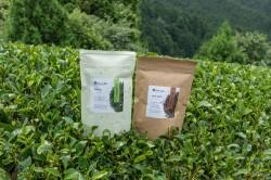 ギフトにぴったり 和束茶二種【香り】※送料無料
