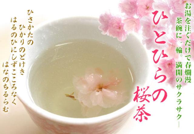 【大容量パック】ひとひらの桜茶10kg(44%off)