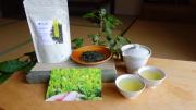 【母の日ギフト】 新茶と茶器セット「癒し」メッセージカード付※税込送料無料!
