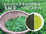 丸みのある茶葉が特徴的な玉緑茶「つゆひかり」