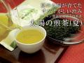 業務用太陽の煎茶夏(1kg)