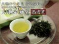 【熟成茶】大地の生命力 満ち溢れる「大地の煎茶」