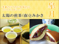 【皐月】太陽の煎茶(春)とみかさ ※送料無料
