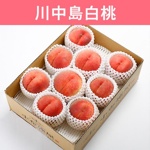 桃 川中島白桃 約3kg