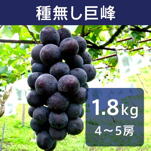 【送料込】種無し巨峰 2kg