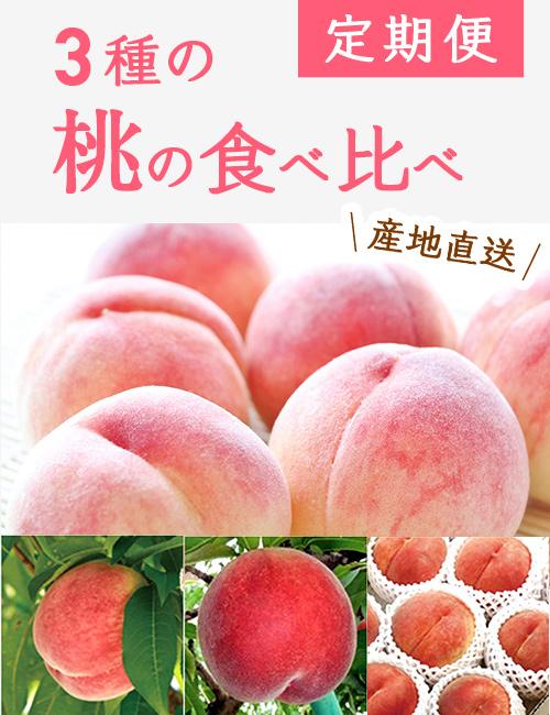 【送料無料】小布施町の3種の桃の食べ比べ定期便(約1.5kg×3回)