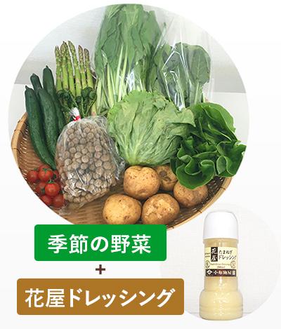 【送料込】小布施屋 野菜セット&OBUSE花屋ドレッシング