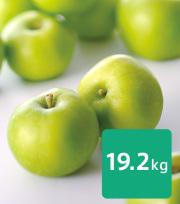 【送料込】りんご 小布施ブラムリー 20kg (10kg×2箱)