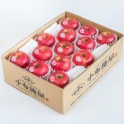 【送料込】りんご ピンクレディー 約2.8kg