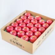 【送料込】りんご ピンクレディー 約4.8kg