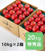 【送料込】りんご サンふじ 特秀品 20kg