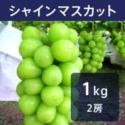【送料込】シャインマスカット 1kg