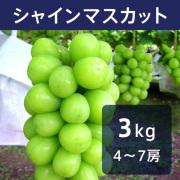 【送料込】シャインマスカット 3kg