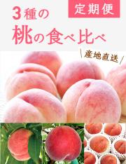 【送料無料】小布施町の3種の桃の食べ比べ定期便(約1.8kg×3回)