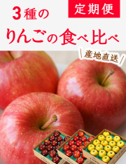 【送料無料】 小布施町の3種のりんごの食べ比べ定期便(約3kg×3回)
