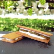プティフル ショコラ シャインマスカット 1箱 8粒入