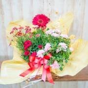 《母の日》花のかご盛り (季節の花3つ+カーネーション1つ)