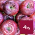 【送料込】りんご 春紅玉 ご家庭用 約4.3kg