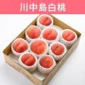 【送料込】桃 川中島白桃 3kg(8~10玉入)