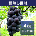 【送料込】種無し巨峰 4kg