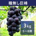ぶどう 種無し巨峰 約3kg
