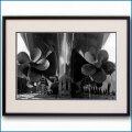 1952年 客船ユナイテッドステーツ・プロペラの写真 3230LL黒